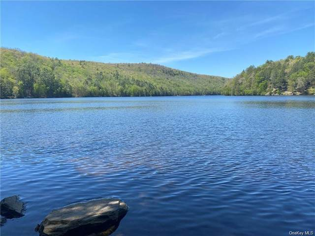 Plank Road, Forestburgh, NY 12777 (MLS #H6109605) :: RE/MAX RoNIN