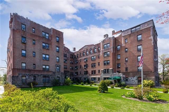 4784 Boston Post Road A41, Pelham, NY 10803 (MLS #H6109642) :: Carollo Real Estate