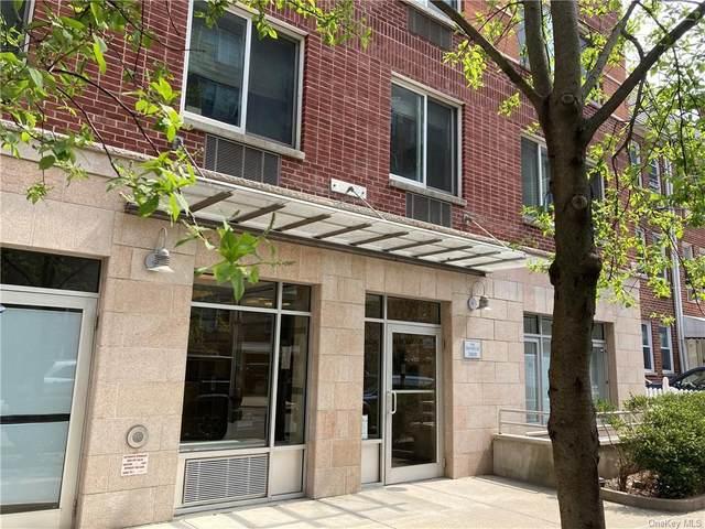 3800 Blackstone Avenue 4N, Bronx, NY 10463 (MLS #H6109727) :: Howard Hanna Rand Realty