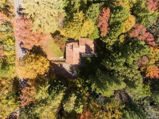 932 Starlight Road, Monticello, NY 12701 (MLS #H6109737) :: Cronin & Company Real Estate