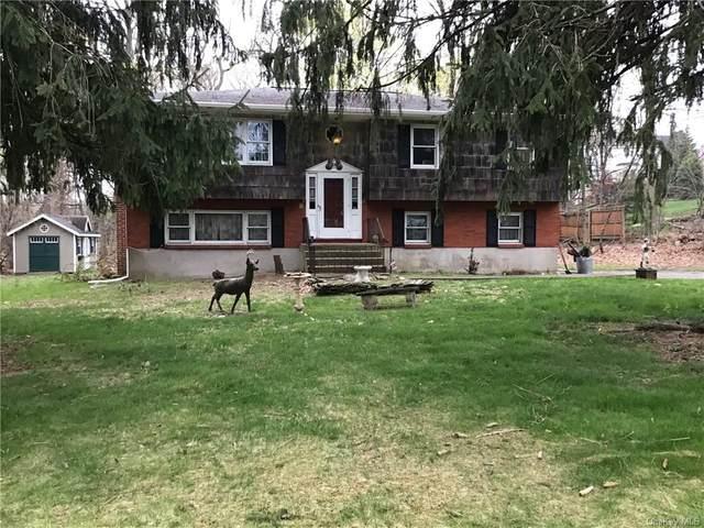 16 Birchwood Avenue, Nanuet, NY 10954 (MLS #H6109786) :: RE/MAX RoNIN