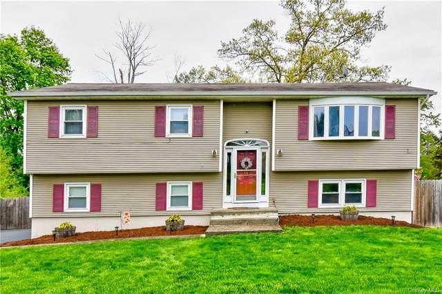 120 Glendale Drive, New Windsor, NY 12553 (MLS #H6109819) :: Corcoran Baer & McIntosh