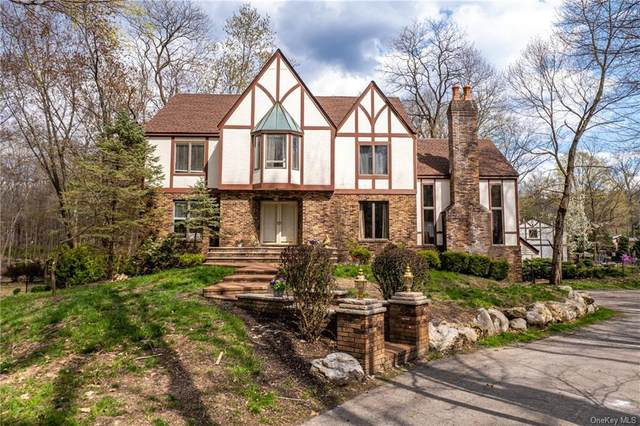 12 Lori Lane, Chester, NY 10918 (MLS #H6109996) :: Signature Premier Properties