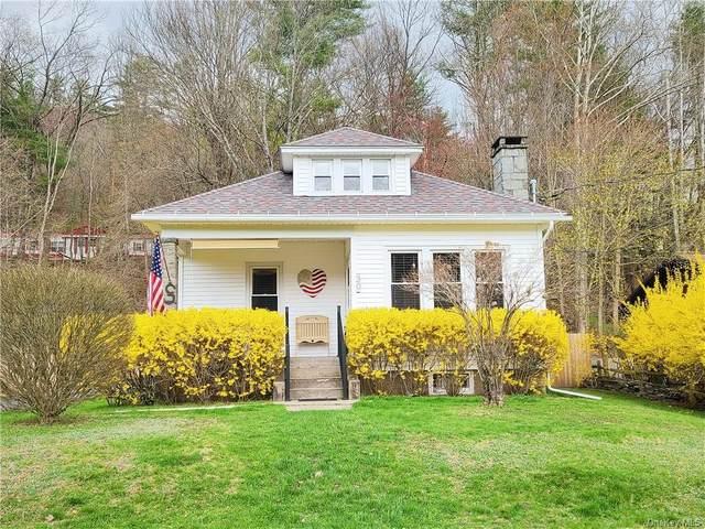 30 Horton Avenue, Callicoon, NY 12723 (MLS #H6110048) :: Signature Premier Properties