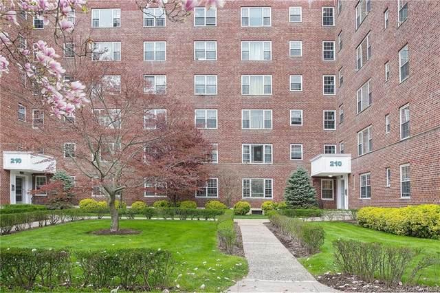 210 Pelham Road 6E, New Rochelle, NY 10805 (MLS #H6110067) :: Howard Hanna | Rand Realty