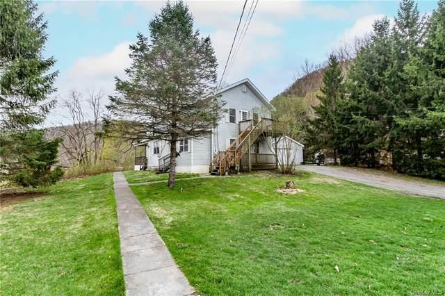 6 Borden Lane, Wassaic, NY 12592 (MLS #H6110097) :: Signature Premier Properties