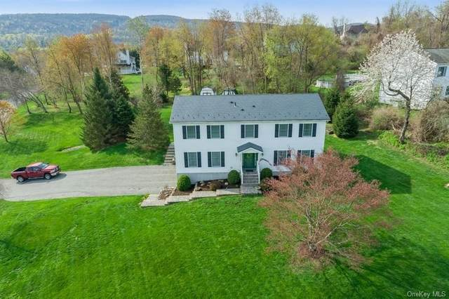 61 Rainbow, Hopewell Junction, NY 12533 (MLS #H6110136) :: Signature Premier Properties