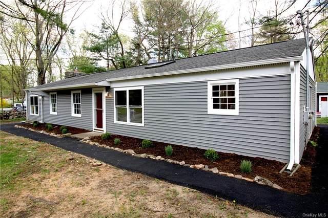 102 Pine Street, West Hurley, NY 12491 (MLS #H6110140) :: Signature Premier Properties