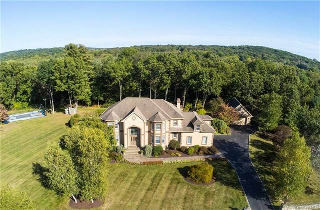 8 Apple Summit Lane, Lagrangeville, NY 12540 (MLS #H6110148) :: Signature Premier Properties