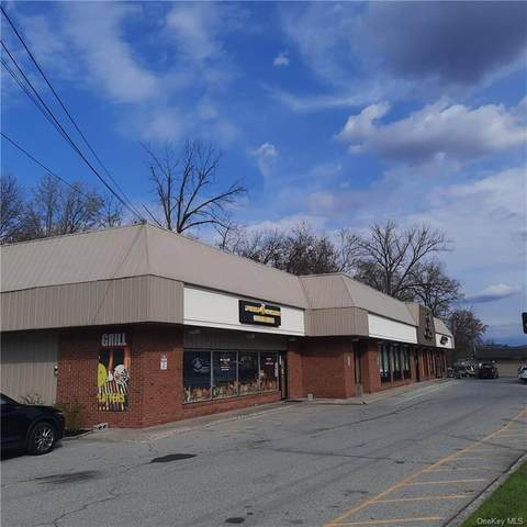 202 S Plank Road, Newburgh, NY 12550 (MLS #H6110149) :: RE/MAX RoNIN