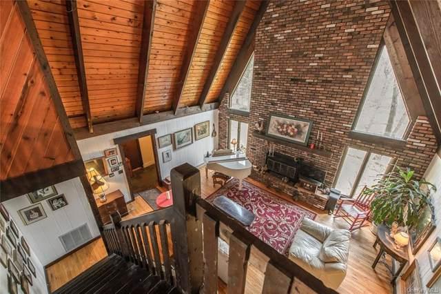 75 Pleasant View Road, Pleasant Valley, NY 12569 (MLS #H6110196) :: Signature Premier Properties