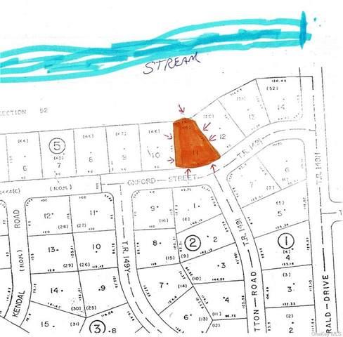 (5-11) Oxford Street, Rock Hill, NY 12775 (MLS #H6110205) :: Nicole Burke, MBA | Charles Rutenberg Realty