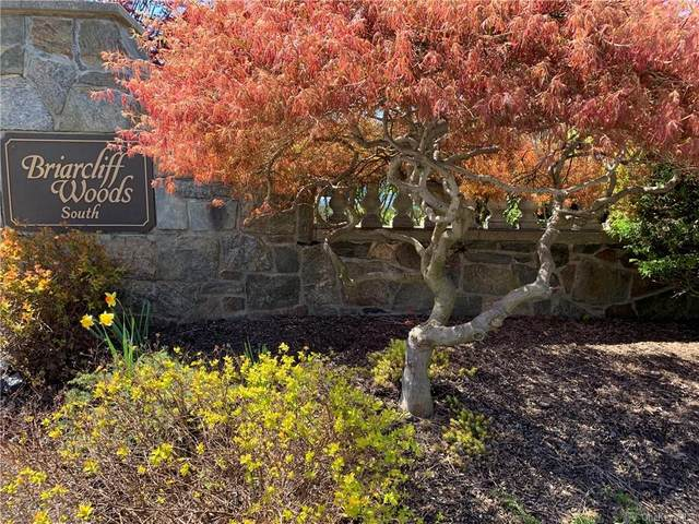 9 Briarcliff Drive S #96, Ossining, NY 10562 (MLS #H6110387) :: Corcoran Baer & McIntosh