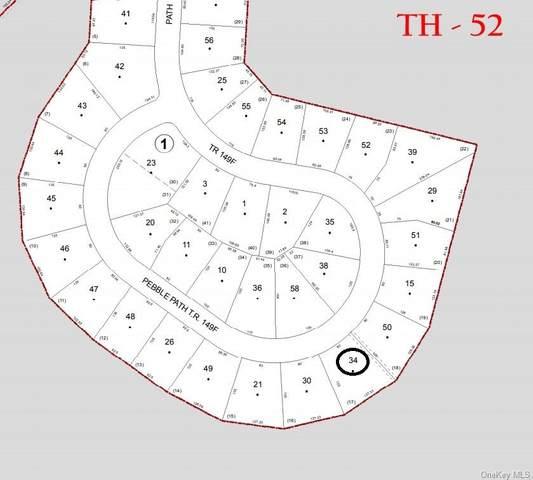 64 Pebble Path, Rock Hill, NY 12775 (MLS #H6110393) :: Signature Premier Properties