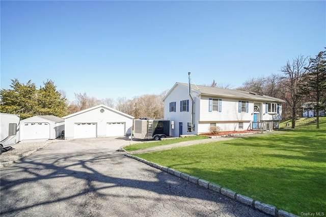 105 Sheldon Road, Wingdale, NY 12594 (MLS #H6110414) :: Signature Premier Properties