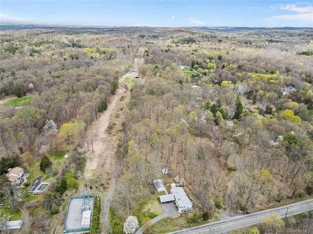 19 Daisy Lane, Staatsburg, NY 12580 (MLS #H6110528) :: Signature Premier Properties