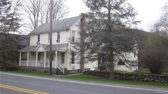 3132 State Highway 30, East Branch, NY 13756 (MLS #H6110530) :: Signature Premier Properties