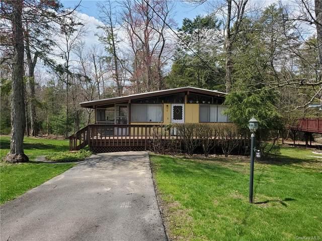 7 Donenfeld Drive, Kauneonga Lake, NY 12749 (MLS #H6110566) :: Signature Premier Properties