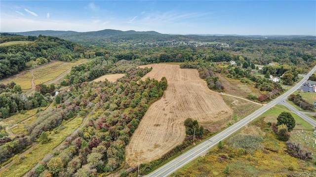 2581 Route 6, Slate Hill, NY 10973 (MLS #H6110580) :: Signature Premier Properties