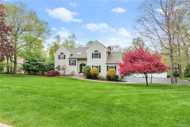 6 Brian Court, Carmel, NY 10512 (MLS #H6110597) :: Signature Premier Properties