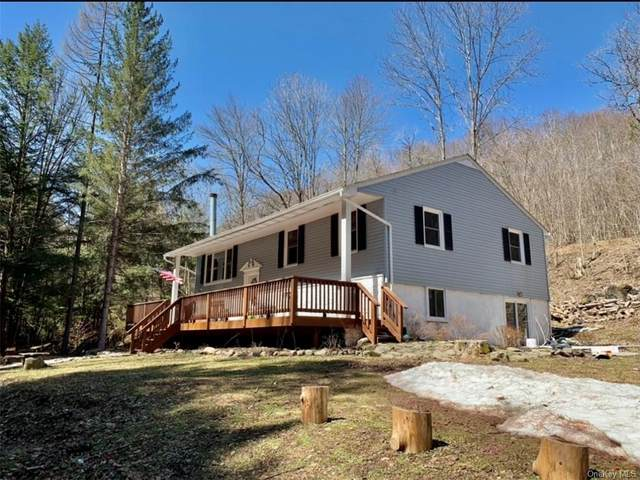 604 Basket Road, Long Eddy, NY 12760 (MLS #H6110632) :: Signature Premier Properties