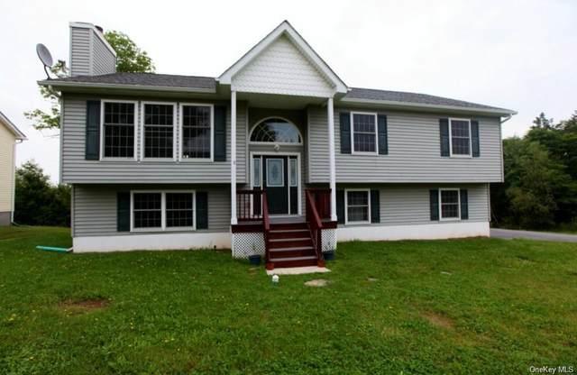 19 Cooke Lane, Monticello, NY 12701 (MLS #H6110633) :: Cronin & Company Real Estate