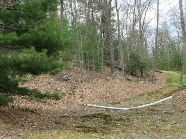 32 Old Country Road, Sparrowbush, NY 12780 (MLS #H6110652) :: Signature Premier Properties