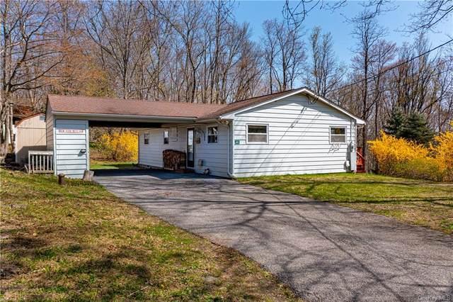 142 Walnut Drive, Pawling, NY 12564 (MLS #H6110796) :: McAteer & Will Estates | Keller Williams Real Estate