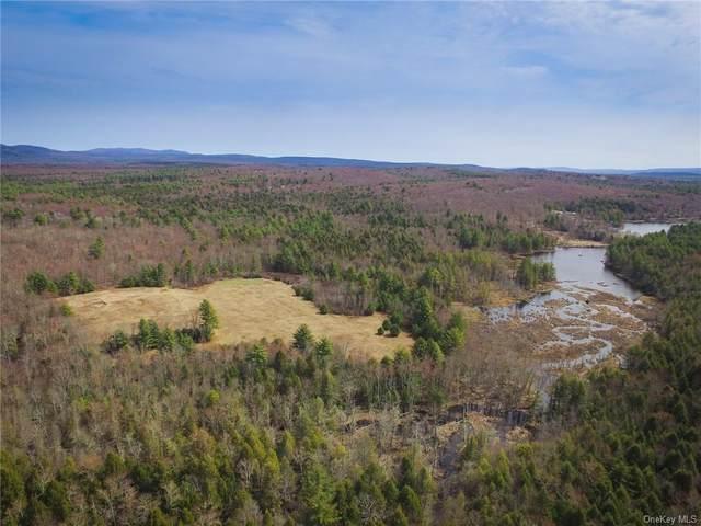 Camp Road, Wawarsing, NY 12428 (MLS #H6110802) :: Signature Premier Properties