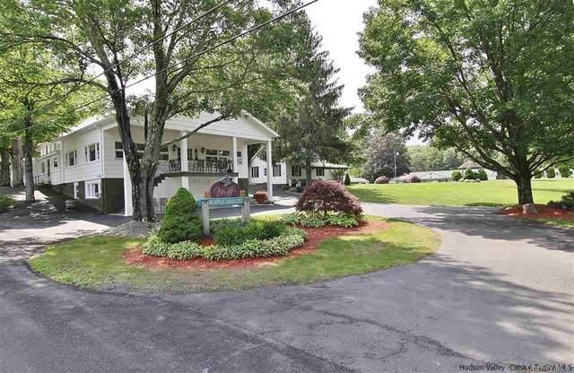 360 Cauterskill Road, Catskill, NY 12414 (MLS #H6110841) :: Kendall Group Real Estate | Keller Williams