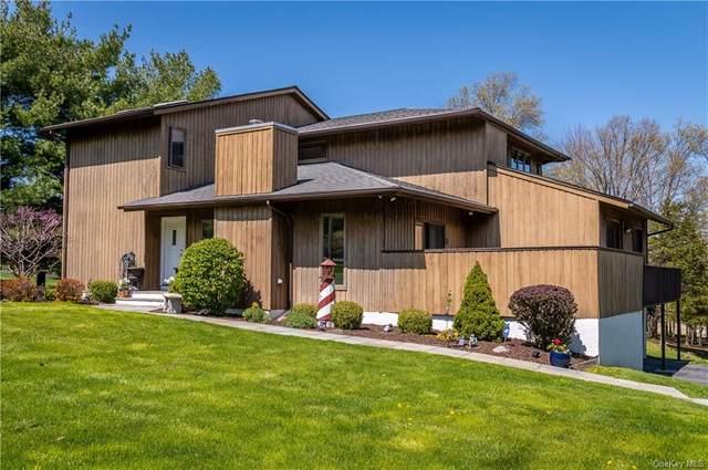 483 Van Wyck Lake Road, Hopewell Junction, NY 12533 (MLS #H6110911) :: The Home Team