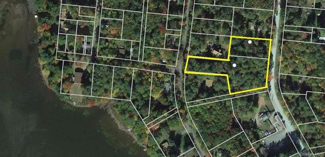 Lakeview And Pine Grove Road, Smallwood, NY 12778 (MLS #H6110983) :: Signature Premier Properties