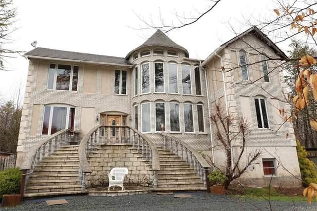 145 Haddock Road, Monticello, NY 12701 (MLS #H6111001) :: Cronin & Company Real Estate