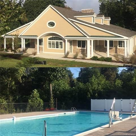227P Hudson View Terrace, Hyde Park, NY 12538 (MLS #H6111004) :: Frank Schiavone with Douglas Elliman