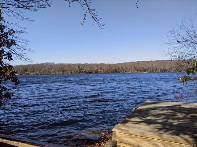 214 S Shore Drive, Wurtsboro, NY 12790 (MLS #H6111157) :: McAteer & Will Estates | Keller Williams Real Estate
