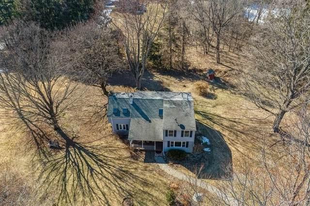 487 Chestnut Ridge Road, Dover Plains, NY 12522 (MLS #H6111162) :: Signature Premier Properties