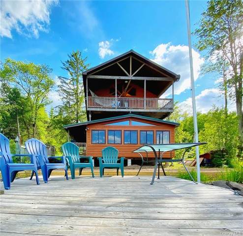 212 Trout Brook Road, Roscoe, NY 12776 (MLS #H6111286) :: Signature Premier Properties