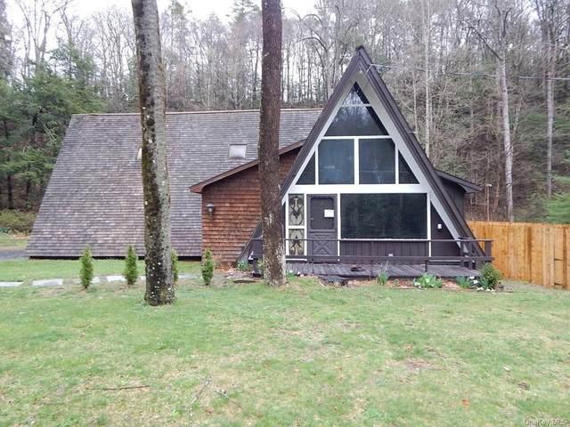 3 Forest Park Place, Port Jervis, NY 12780 (MLS #H6111385) :: Signature Premier Properties