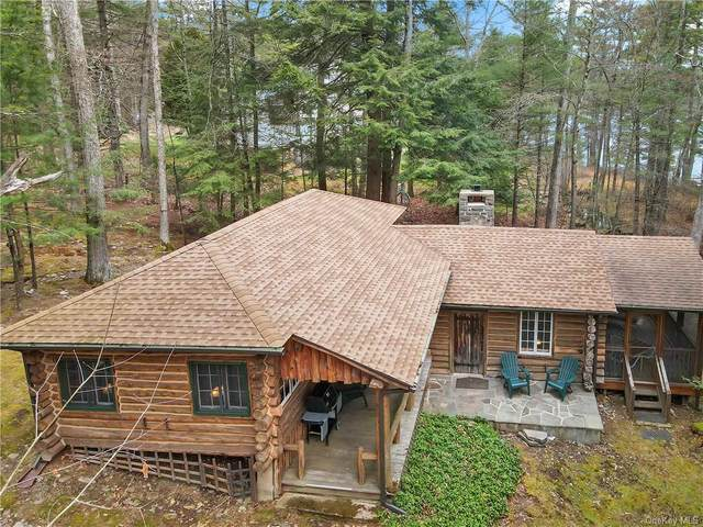 17 Goose Point Road, Glen Spey, NY 12737 (MLS #H6111388) :: Signature Premier Properties