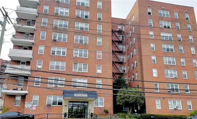 365 Bronx River Road 1E, Yonkers, NY 10704 (MLS #H6111400) :: RE/MAX RoNIN