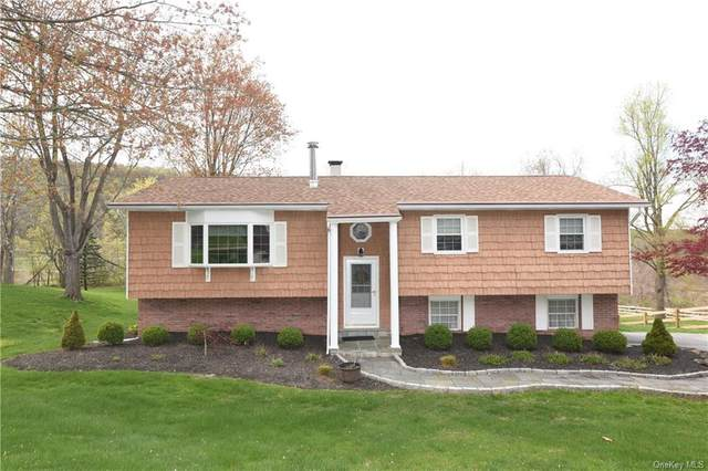 7 Patti Place, Hopewell Junction, NY 12533 (MLS #H6111403) :: Signature Premier Properties