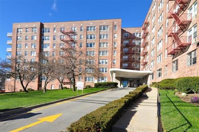 333 Bronx River Road #617, Yonkers, NY 10704 (MLS #H6111408) :: Carollo Real Estate
