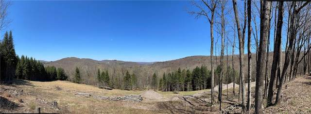 Poley Road, North Branch, NY 12766 (MLS #H6111411) :: Signature Premier Properties