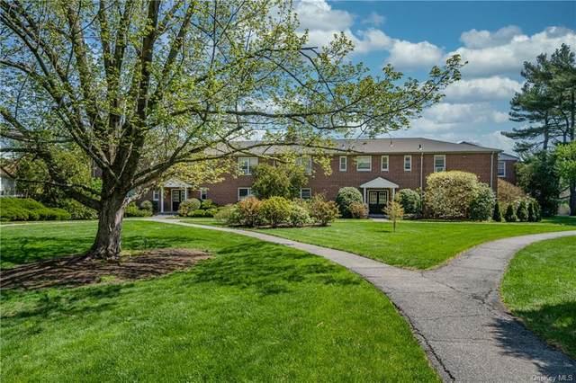 215 Schrade Road 1A, Briarcliff Manor, NY 10510 (MLS #H6111430) :: Carollo Real Estate