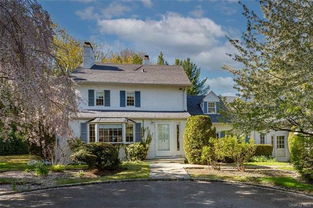 Wilmot Road, New Rochelle, NY 10804 (MLS #H6111599) :: Corcoran Baer & McIntosh