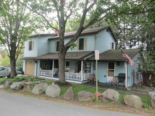 6 Third Avenue, Narrowsburg, NY 12764 (MLS #H6111622) :: Signature Premier Properties