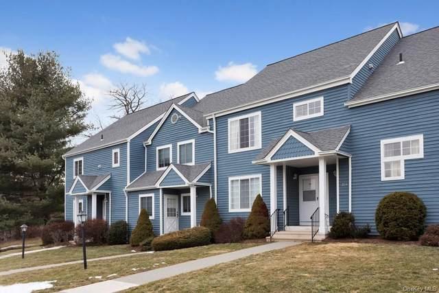 204 Sheffield Court, Brewster, NY 10509 (MLS #H6111656) :: Barbara Carter Team