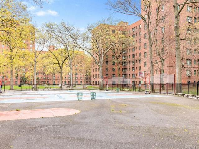 18 Metropolitan Oval 1E, Bronx, NY 10462 (MLS #H6111746) :: McAteer & Will Estates | Keller Williams Real Estate