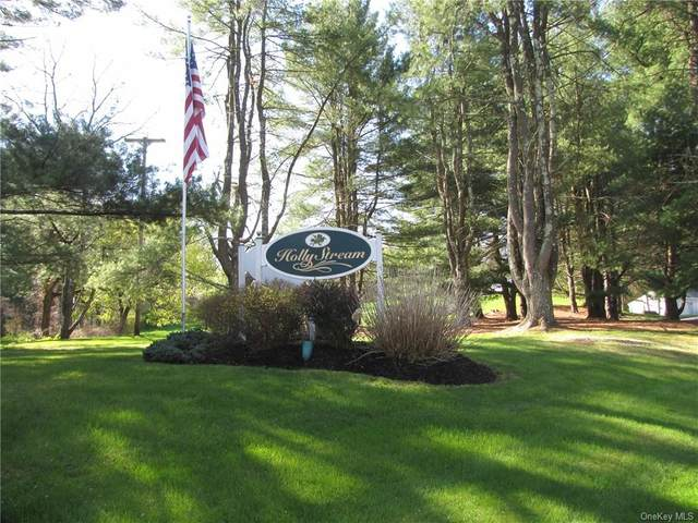 201 Holly Stream Court #201, Brewster, NY 10509 (MLS #H6111749) :: The Home Team