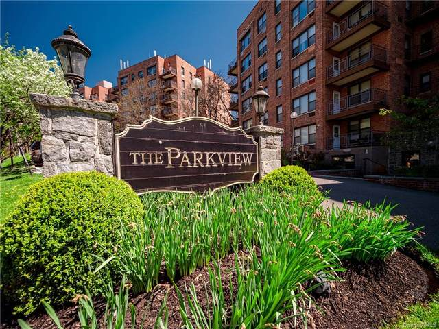 117 S Highland Avenue 3F, Ossining, NY 10562 (MLS #H6111793) :: Barbara Carter Team